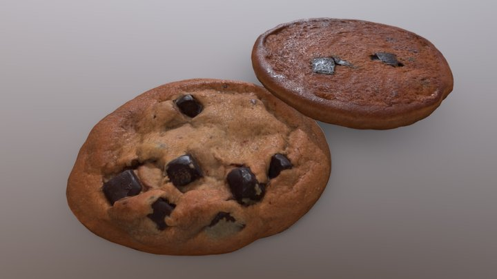 Coho Chip Cookie TextureScan 3D Model