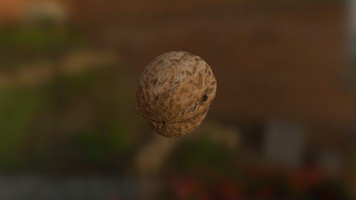 English Walnut Scan Lowpoly 3D Model