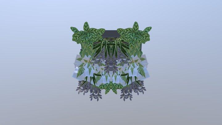 solo 3D Model