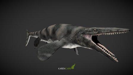 Witte Tylosaur 3D Model