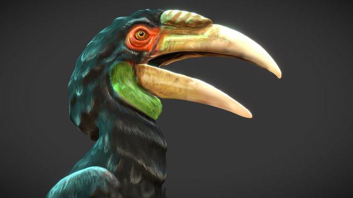 Hornbill 3D Model
