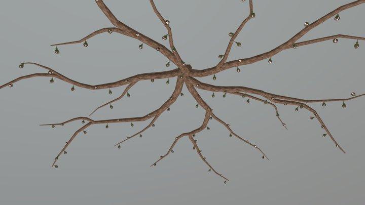 Cherry Tree13 Stage1 3D Model