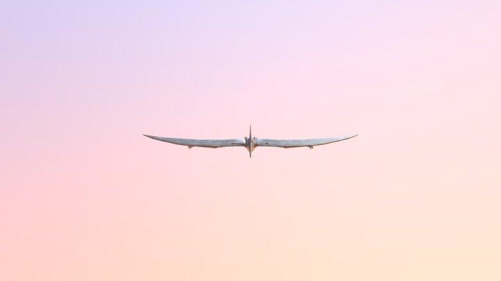 Dinosaur - Pteranodon 3D Model