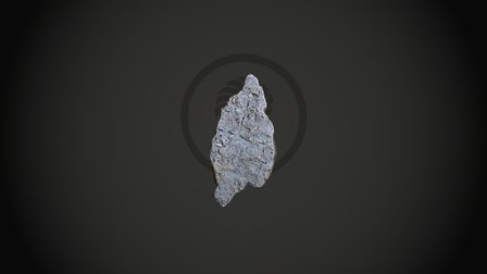 Trace Fossils from the Wealden 3D Model