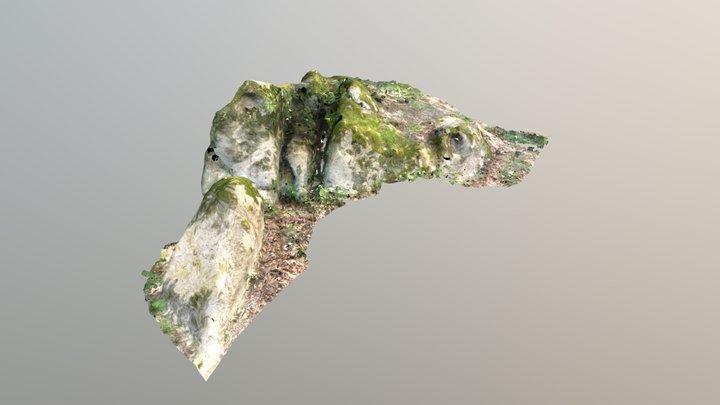 Kaptárkő minta 3D Model