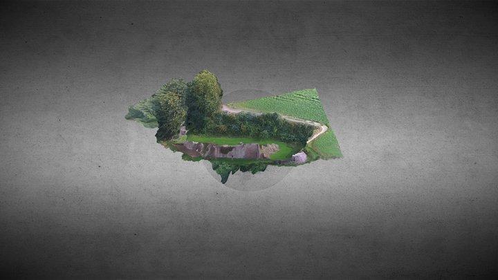 Goodrich Castle 3D Model