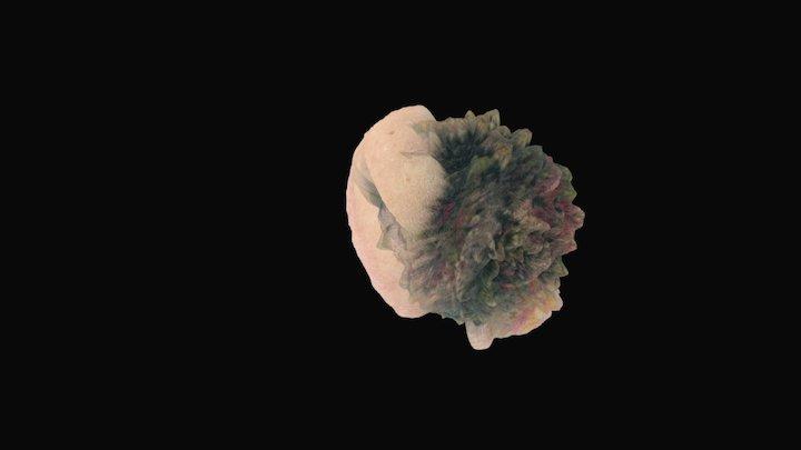 orb 3D Model