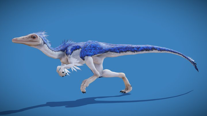 Compsognathus Longipes 3D Model