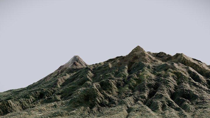 Terrain (Nevado de Colima, Mexico) 3D Model