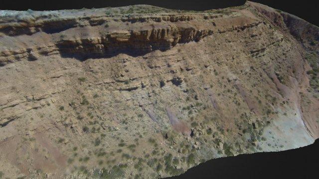 Rio Blanco outcrop - Mendoza 3D Model