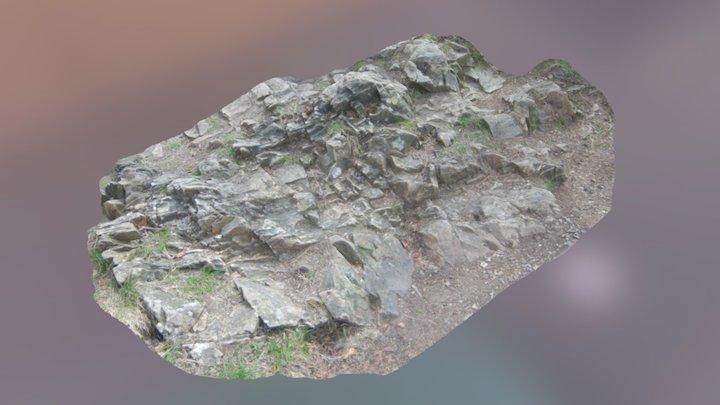 Scanned Flat Rocky Surface 3D Model