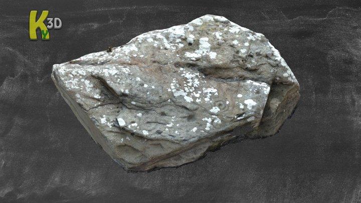KE052-303  Cill Farnóg Rock Art 3D Model
