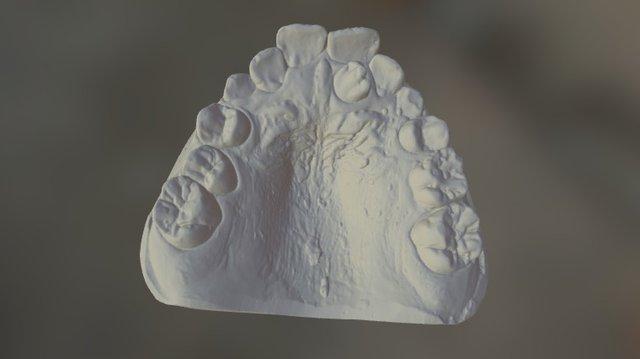 SL29 Upper 3D Model