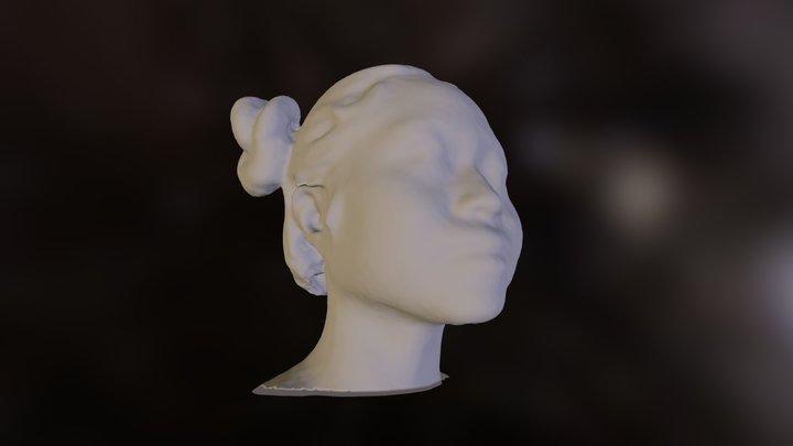 MC 3D Model