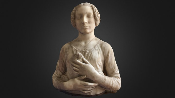 """Verrocchio's Bust of """"Ginevra""""--Test 1 3D Model"""