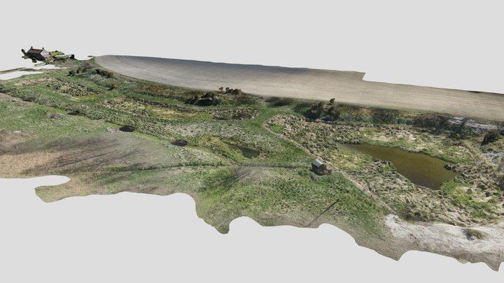 Frogshall 3D Model