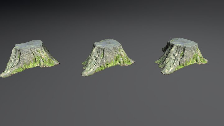 Stump 1 3D Model