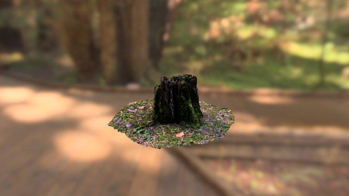 Happy Stump 3D Model