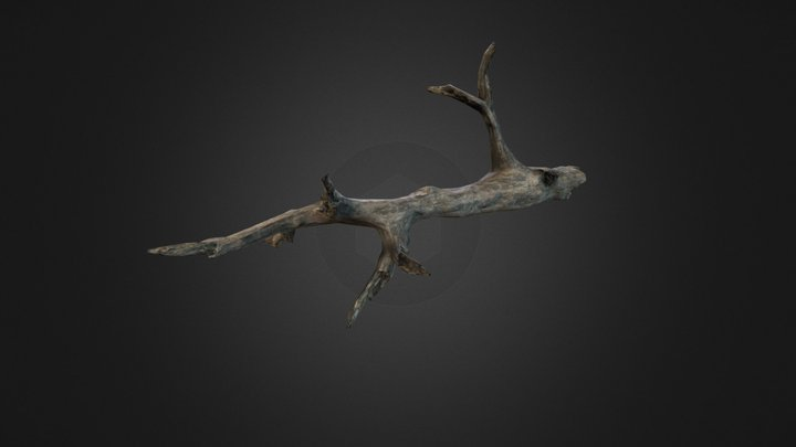 Branch Big 3D Model