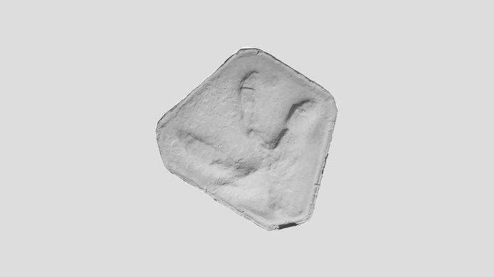 Dinosaur footprint Mount Morgan A1 3D Model