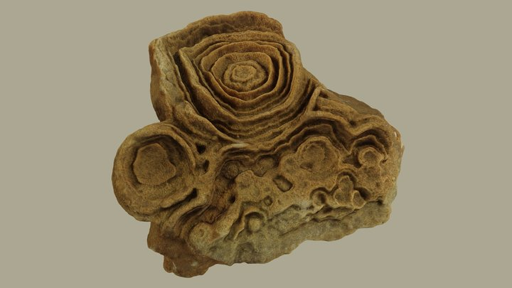 """""""Desert rose"""" 3D Model"""