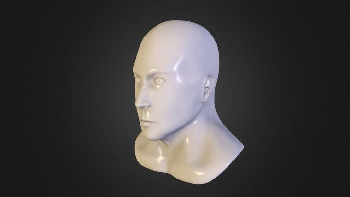 My second head sculpt attempt :) 3D Model