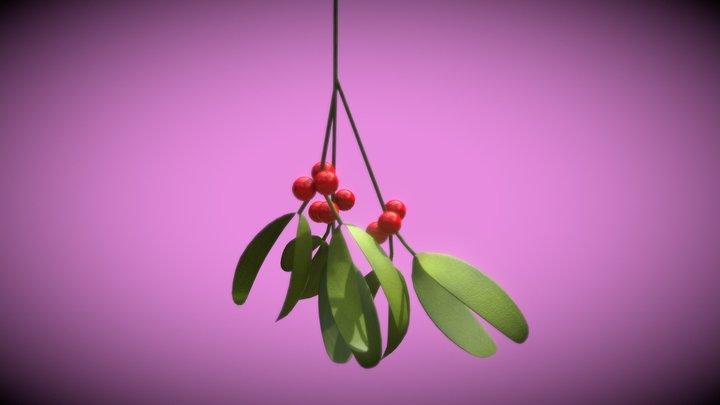 3December2020 - 15 Plant 3D Model