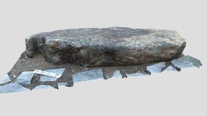 Ashe Plutonic Suite 3D Model