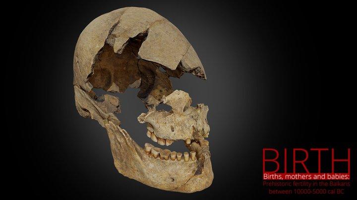 Grave 74/Grob74 - Vlasac site 3D Model
