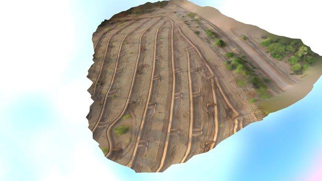 Modelo tridimensional campo Navomora 3D Model