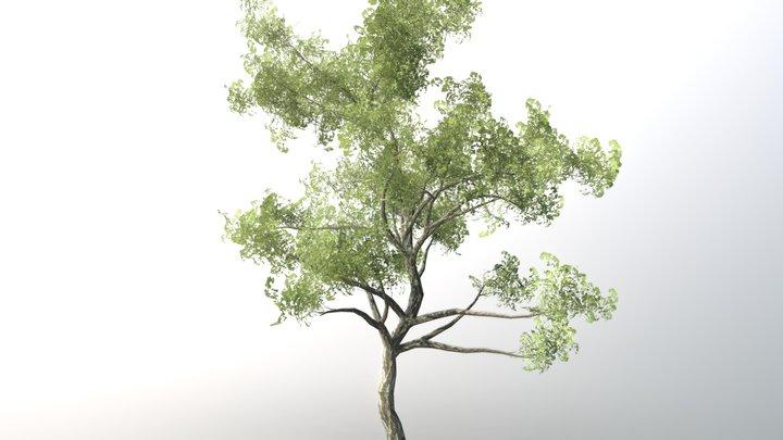 Tree For Games 3D Model