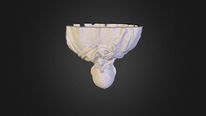 Johhny's scan 3D Model