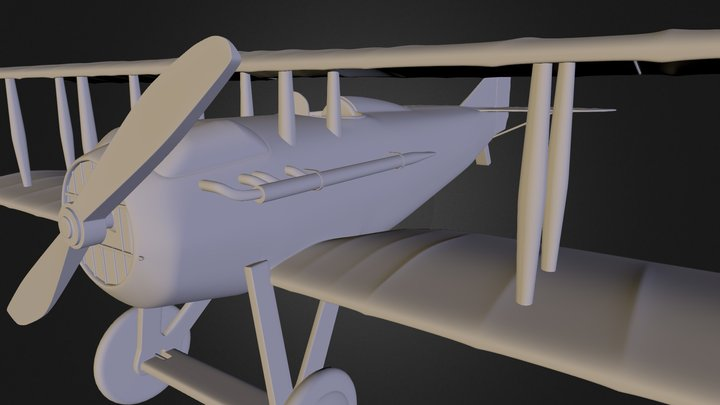 wip airplane 3D Model