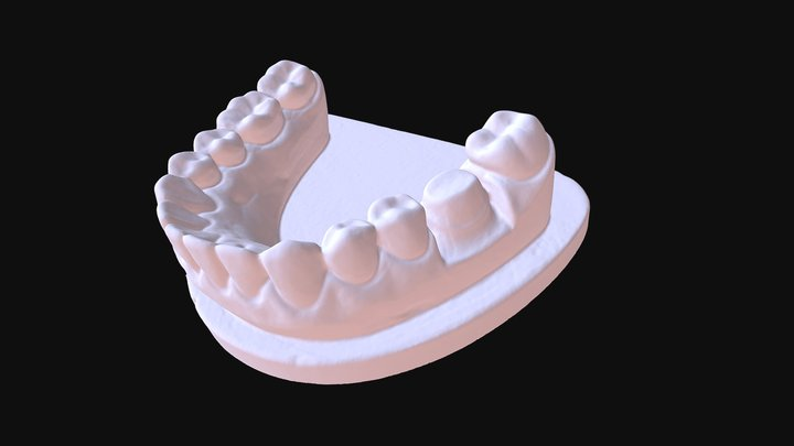 Tooth mode by Thunk3D Cooper C20 3D Model