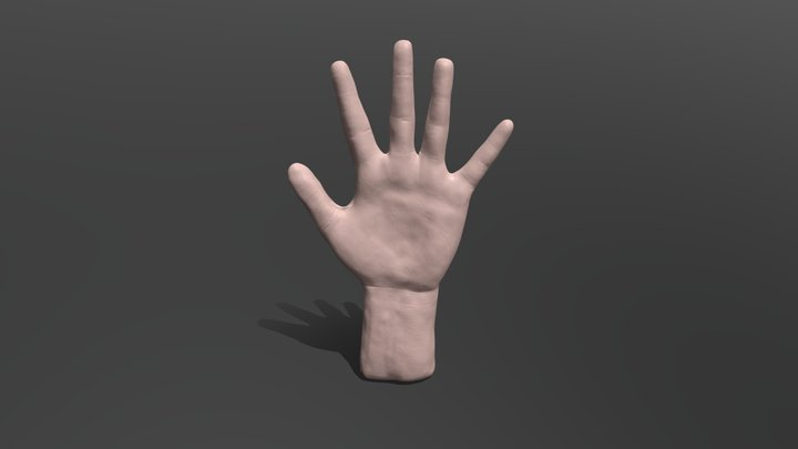 Realistic hand training 3D Model