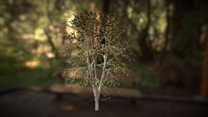 Tree (Free download) 3D Model