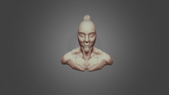 ZRemesher - Human Bust 3D Model