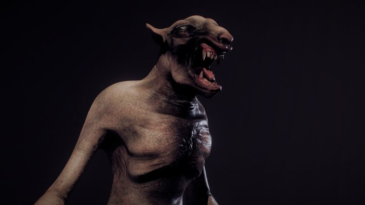 the Wolfman 3D Model