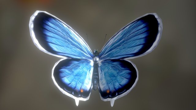 Butterfly Eastern Tail Blue 3D Model