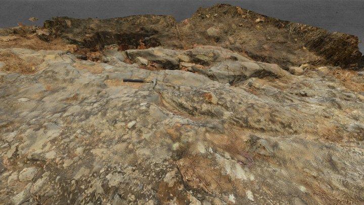 Levantamiento Geologico Poki 3D Model