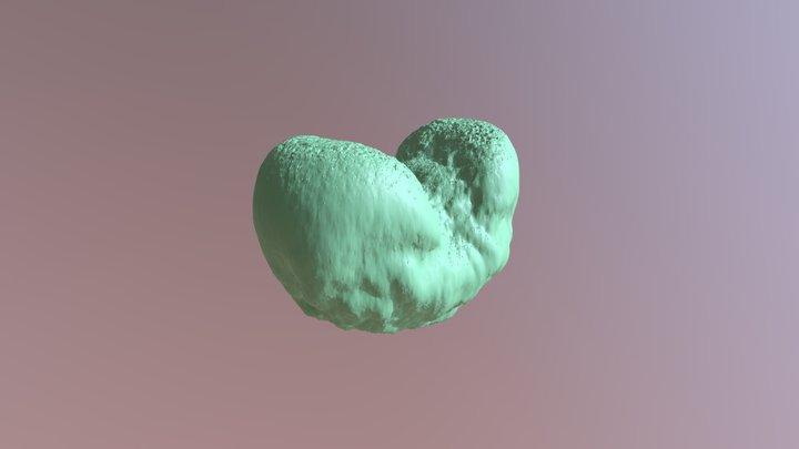 Deodar Cedar pollen 3D Model