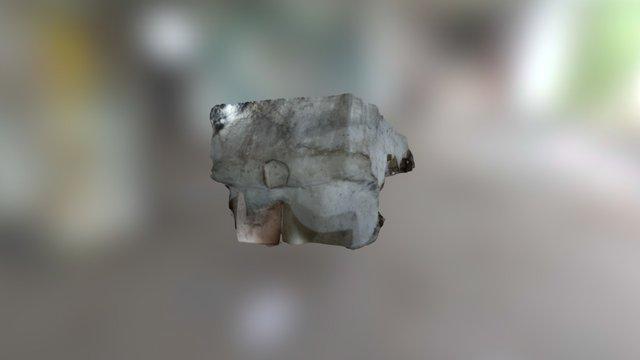 SARCCH 3D Model