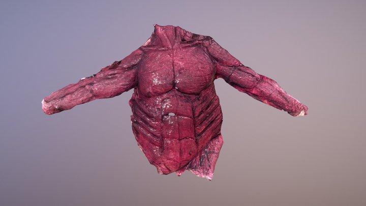 Dead corps latex photogrammetry 02 3D Model