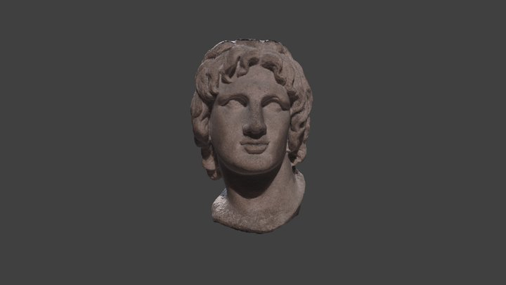 Head of Alexander the Great Model 1 3D Model