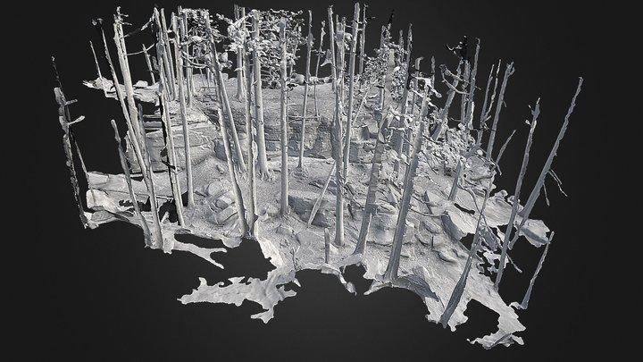 Warsaw Kettles 06: Scene Mesh 5Mil 3D Model