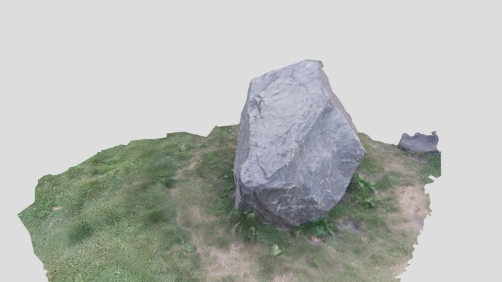 stone photogrammetry 3D made by 3df-zephyr 3D Model