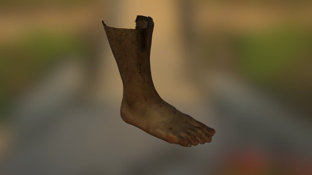 Foot 3D Scan 3D Model
