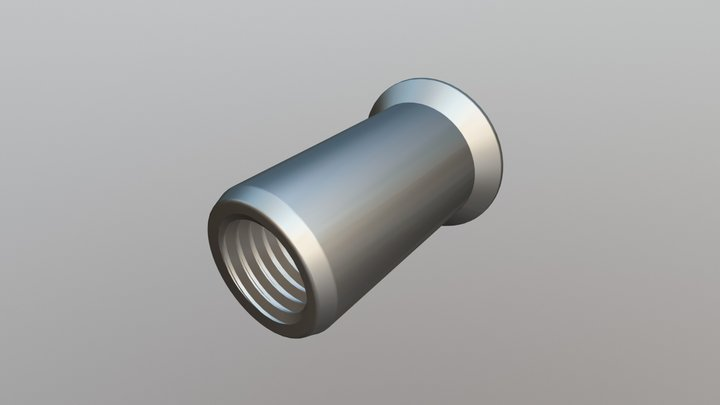 Rivet Nut - Csk Head, Plain Body Open End 3D Model