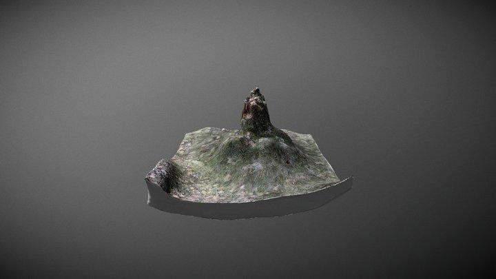 Stump, Scanned in Finland 3D Model