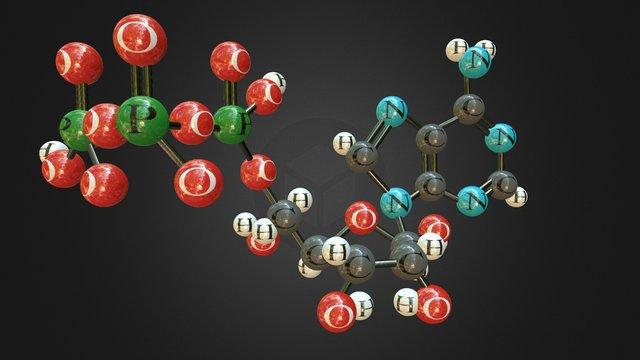 Adenosine triphosphate (ATP) 3D Model